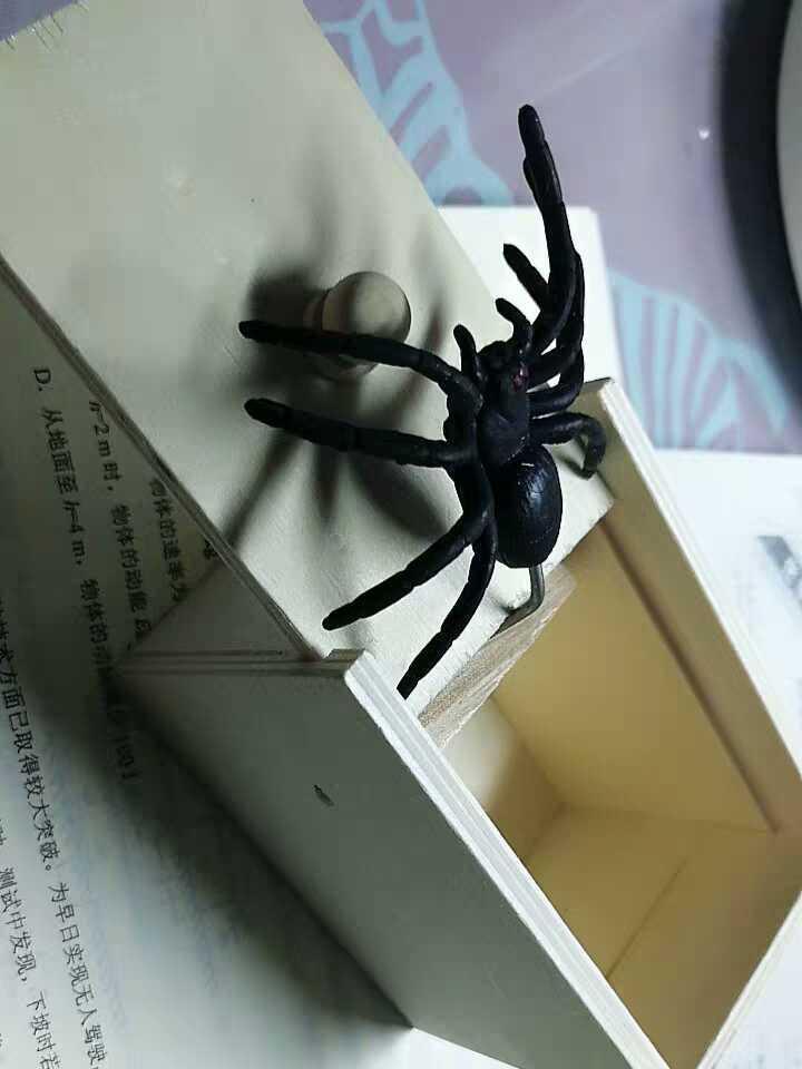 图片[1]-科普博士领小蜘蛛-飞享资源网