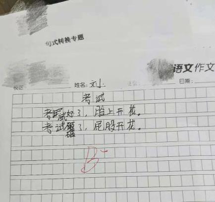我哈哈哈哈哈哈哈,小学生做作业本来就全靠想象力!