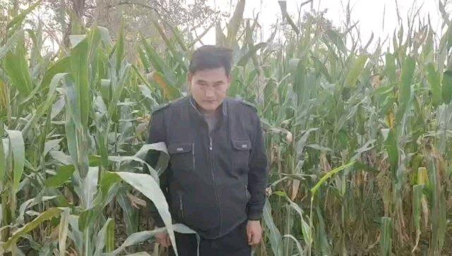 腾讯新闻的网友大家好,我是大衣哥朱之文,很高兴认识大家。