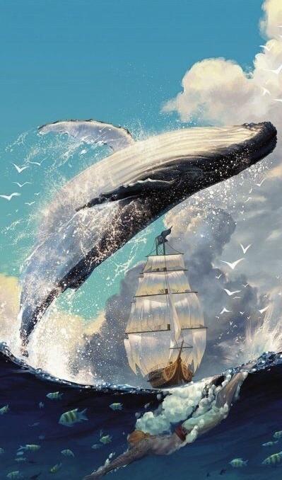 """大家可能多数人不知道""""鲸落""""是什么…""""鲸落""""其实就是指鲸鱼死后沉入海底的一个过程,有资料显示,沉入海底的鲸鱼尸体会被上万个生物吃掉,甚至出现新的物种。鲸落大致分为几个阶段:1.刚死亡不久时,以腐肉为生的动物会聚集:2.几个月后,尸体大部分骨骼化,但是头部和脂肪组织仍然存在;3.一年半后,尸体周围出现各种生物,贻贝数量居多;4.两年半到三年半后,鲸鱼尸体的物种丰富度较高(1.5年、2.5年和3.5年分别为44、56和85个类群)这也就是为什么会有""""一鲸落,万物生""""的说法由来。而为什么我们会发现鲸落这么惊喜呢?那是因为科学家没办法预测哪一条鲸鱼要在什么时候要在哪里死亡,也没有办法满南海的去找,所以观察鲸落是一个特别随缘的项目。"""